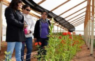 Ramillete de floricultoras limarinas se capacita en Ovalle
