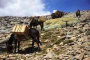 """""""Turismo de Experiencias"""" es la apuesta de Monte Patria"""