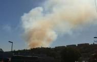 Gobernador  presenta querella por incendio forestal ocurrido en Ovalle: habría sido intencional