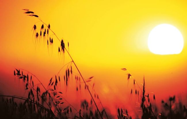 Hasta 34 grados pronostican para algunos sectores de la provincia del Limarí
