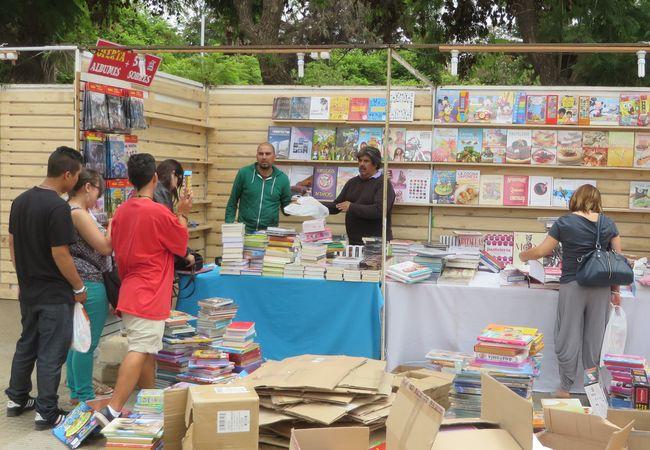 Listos los libros que serán presentados en la 30ª Feria del Libro de Ovalle
