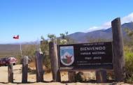 Reabren sus puertas el Parque Nacional Fray Jorge, Parque Pichasca y  la Reserva Pingüino de Humboldt .