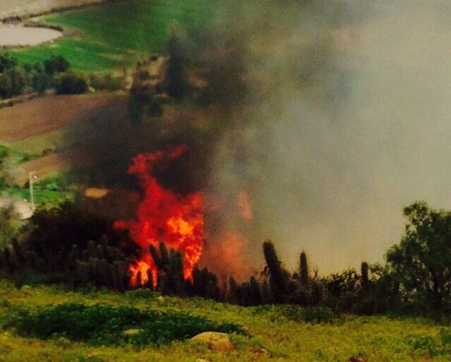 Incendios de pastizales alarman a vecinos de la ruta D- 55: sospechan intencionalidad
