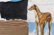 """""""Las ciudades de los perros"""": Artista busca reflexionar sobre los animales  en las calles"""