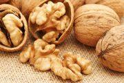 Productores de nueces de Monte Patria se asocian para la exportación del producto