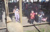 El 12 de agosto se celebra en Ovalle el Día del Niño