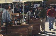 En Ovalle celebraron el Día Nacional del Vino