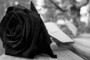 Obituarios de hoy Martes 13 de Noviembre