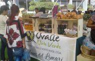 Iquique conoció las delicias y sabores de Ovalle Norte Verde