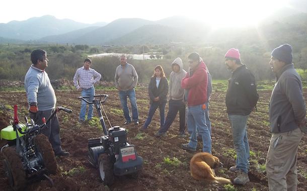 Comercial Tabilo: comprometidos con el desarrollo de la agricultura familiar campesina