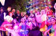 El árbol de navidad natural más grande de Chile ya ilumina Ovalle