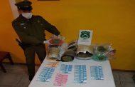 Dos golpes al tráfico de drogas se concretan en Ovalle y Los Vilos