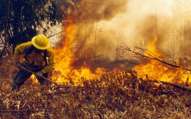 Anuncian aumento de recursos para prevenir y combatir incendios forestales