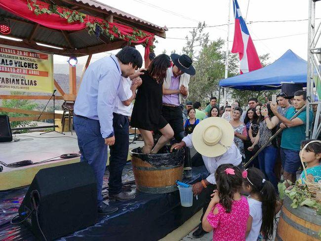 Con Fiesta de la Vendimia celebraron en Río Hurtado aumento de producción de uva