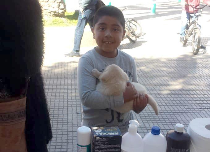 Foto Noticia: Los niños y su primera mascota