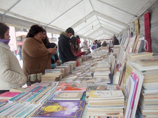 """Feria Cultural en la Plaza: Una """"Golondrina de Invierno"""""""