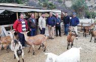 Buscan fomentar iniciativas y emprendimientos del agro en Río Hurtado