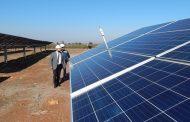 Parque solar en Limarí entrega energía al Sistema Eléctrico Nacional