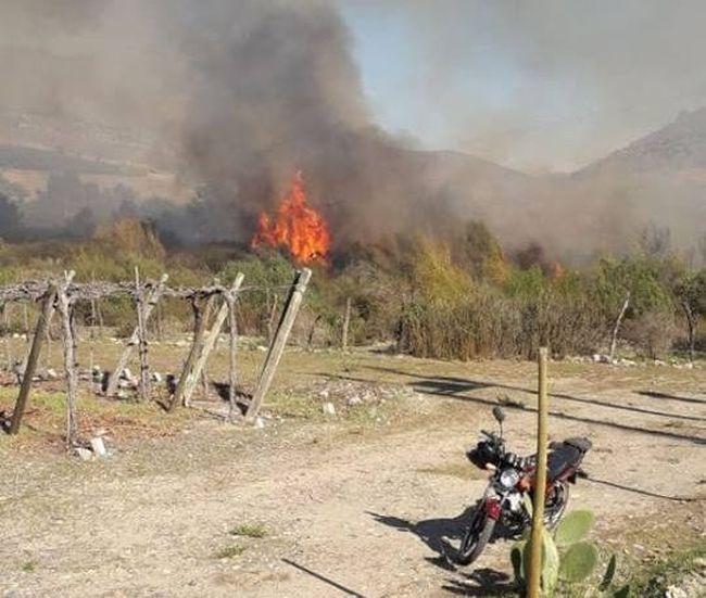 Alerta roja en la comuna de Ovalle por gran incendio forestal