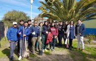 Donan más de mil árboles a escuelas públicas de Monte Patria