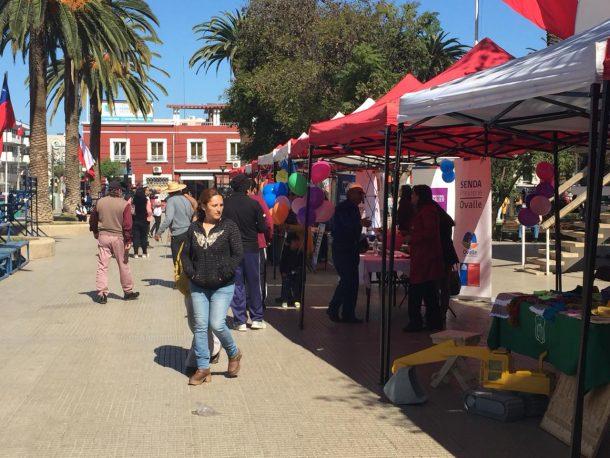 Ovallinos pudieron resolver dudas en Feria de Seguridad pública en Plaza de Armas