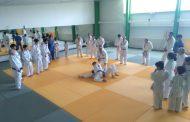 [FOTOS] Judokas limarinos participaron en clínica para rendir exámenes