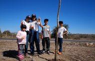 Estudiantes ovallinos participan en jornada de arborización en la Costanera
