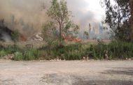 Voluntarios de bomberos acuden a incendio forestal en bosque La Chimba