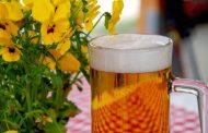 Cerveza artesanal: diferencia tu IPA de tu Pale Ale