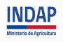 Declaración Pública Organizaciones Campesinas e Indígenas por despidos en INDAP