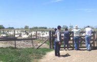 Crianceros de Río Hurtado viajaron a Argentina para capacitarse en la elaboración de quesos