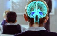 Selección escolar, mérito e inclusión: ¿El cerebro nace o se hace?