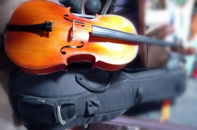 Compró en $ 30 mil en la calle violoncelo que valía un millón
