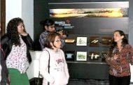 Plan de visitas temáticas al Museo: Invitan a conocer la Prehistoria de la región de Coquimbo