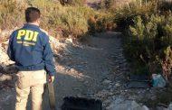 Investigan el hallazgo de cuerpo sin vida en la ribera del Río Limarí