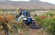 Conductor de tractor fallece al volcar  máquina al interior de fundo