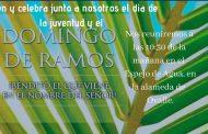 Vicaría del Limarí invita a jóvenes de la zona a celebrar el día Mundial de la Juventud  y el Domingo de Ramos