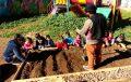"""Jardín infantil ovallino presentará en seminario nacional el ceremonial aymara del """"Pachallampe"""""""