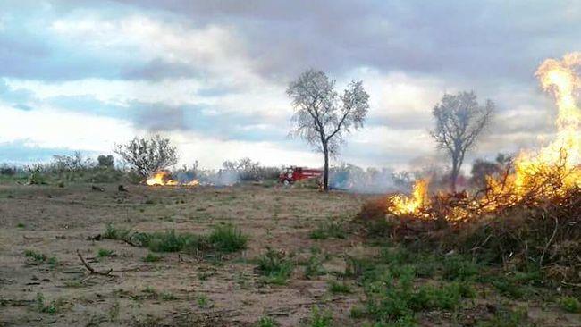 Monte Patria prohíbe quemas en toda la comuna