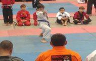 Karatecas ovallinos obtienen 16 medallas en torneo internacional realizado en Santiago