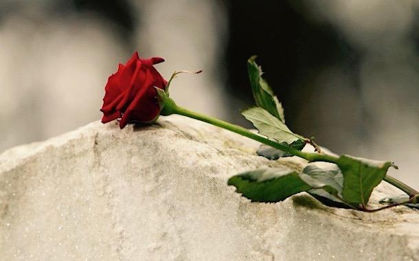 Obituarios del día domingo 1 de diciembre