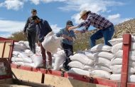 Crianceros de toda la región de Coquimbo recibieron alimento para sus animales