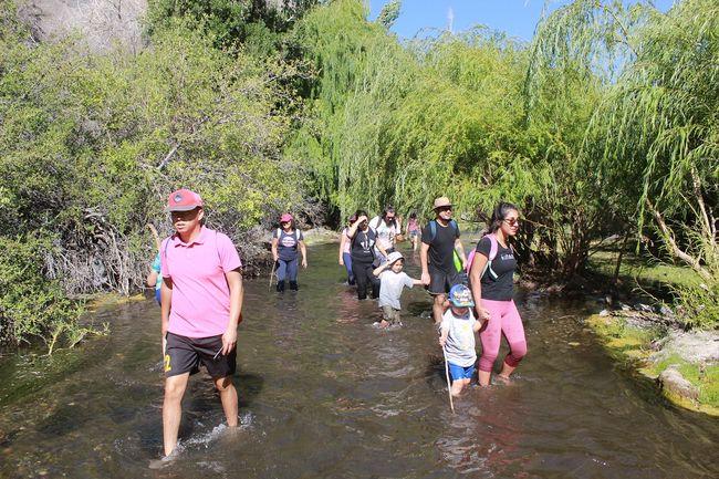 Familias de la región maravilladas con jornada de senderismo en Monte Patria