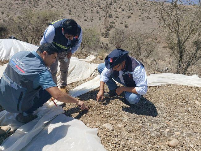 Trabajan para solucionar problema de plaga de moscas que afecta a localidad de Talhuén
