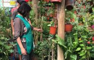Lanzan salvavidas para que pequeñas y medianas empresas del Limarí puedan reactivar sus ventas