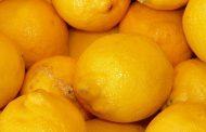 Los pillaron en la carretera con 60 kilos de limones al hombro