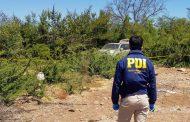 Investigan misterioso hallazgo de cadáver en la parte alta de Ovalle