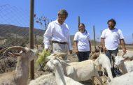 Destacan prácticas ejemplares de pequeños agricultores ante la sequía y el cambio climático