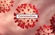 Covid-19: 161 nuevos casos en la región de Coquimbo