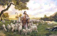 Hacer de nuestra vida una semilla multiplicadora del amor de Dios